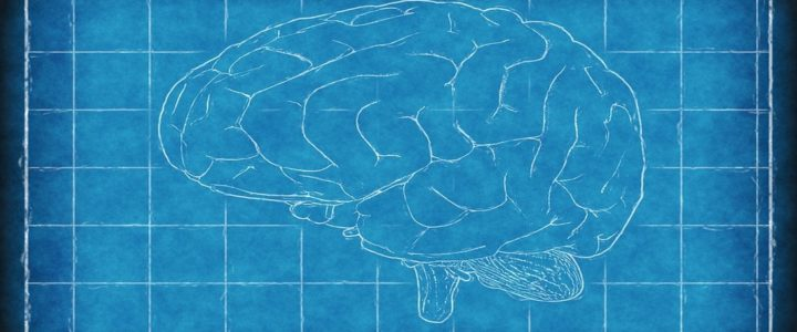Co psychologia mówi o mnemotechnikach
