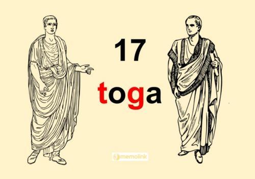 System główny 17 Toga