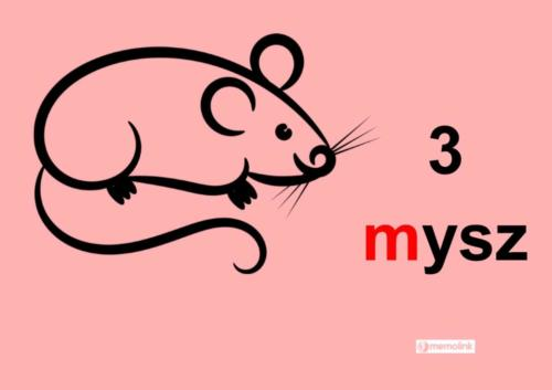 System główny 3 Mysz