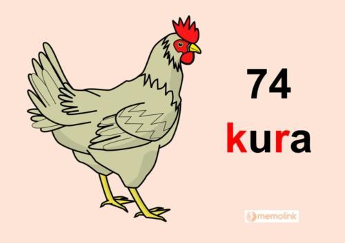 System główny karta 74 kura